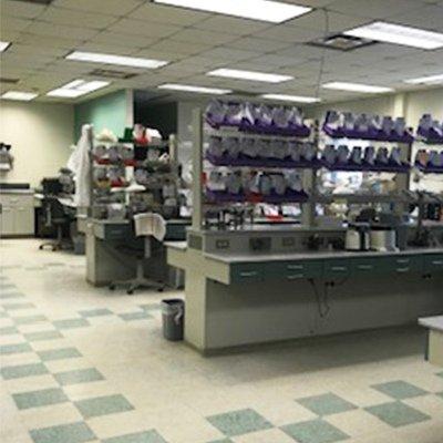 ROE Dental Laboratory, Jamestown, NY